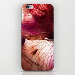 Dried flower iPhone Skin