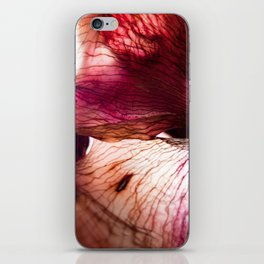 Dried flower iPhone Skin