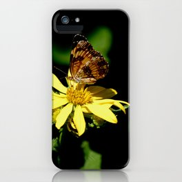 Flutter, Flutter at Hawn State Park (Missouri) iPhone Case