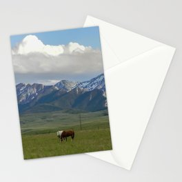 Horses of the Mission Creek Ranch Graze Stationery Cards