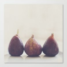 figs. We 3 Figs. Canvas Print