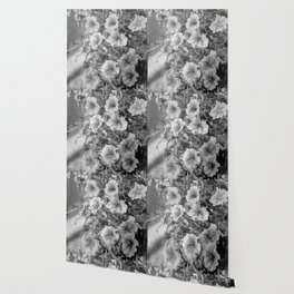 Morning Glories In Black And White Wallpaper