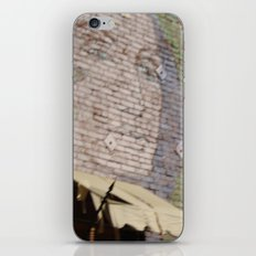 Paint Brick Face iPhone & iPod Skin