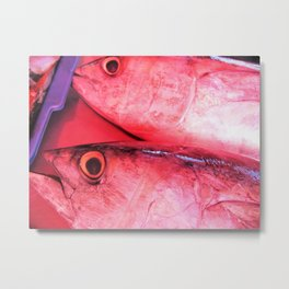 Catch of the Day #2 - Sri Lanka Metal Print