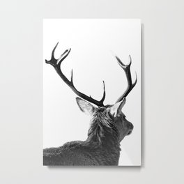 Hey Deer Metal Print