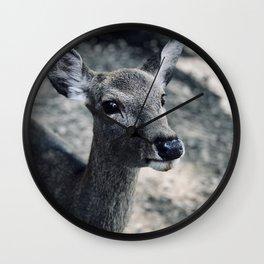 Deer Nara Wall Clock