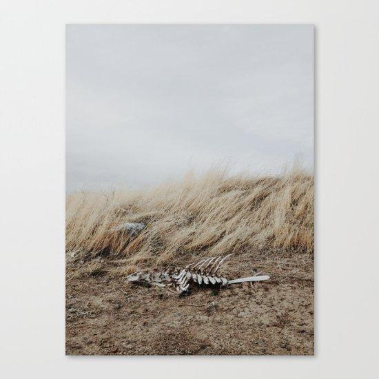 Winded Skeleton Canvas Print