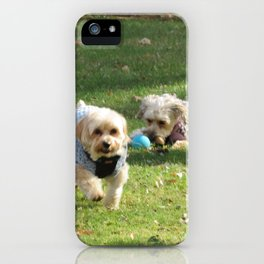 Copper & Penny iPhone Case