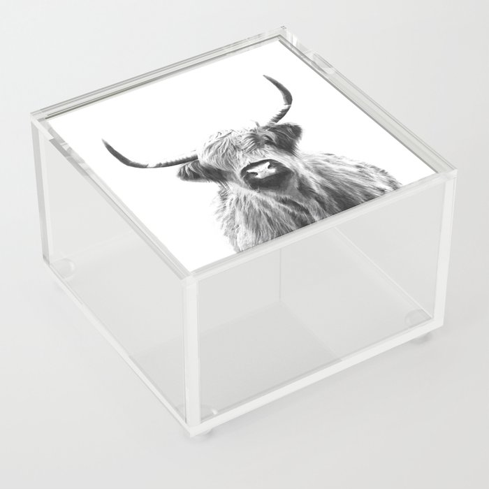 Black and White Highland Cow Portrait Acrylic Box