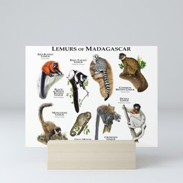 Lemurs of Madagascar Mini Art Print