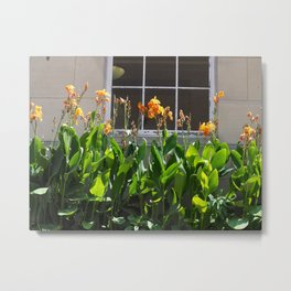 Tiger Lilies in Line at the Post Office Metal Print
