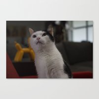 chuck Canvas Prints featuring Chuck by StanleyStudio