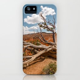 Dying Tree at Bryce Canyon National Park iPhone Case