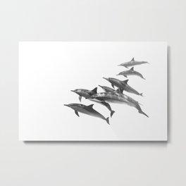 130524-6812 Metal Print