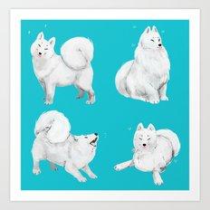 Samoyeds Art Print