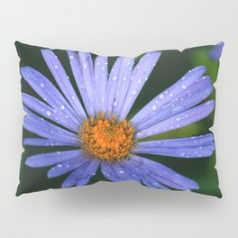Blue Daisy Pillow Sham