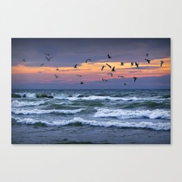 Surf on Lake Michigan with flying Gulls Canvas Print
