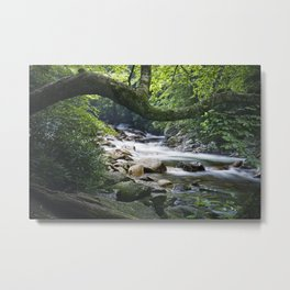 Smoky Mountain Stream in Tennessee Metal Print