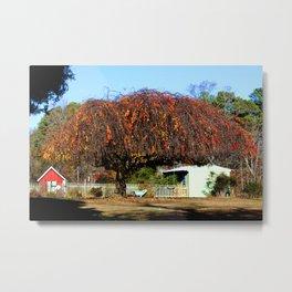Swing Under Cascading Tree Metal Print
