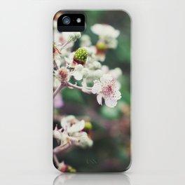 Rubus iPhone Case