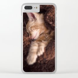 Sleepy cat Clear iPhone Case