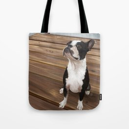Boston Terrier 1 Tote Bag