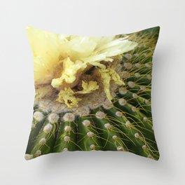 Barrel Cactus - Joshua Tree Throw Pillow