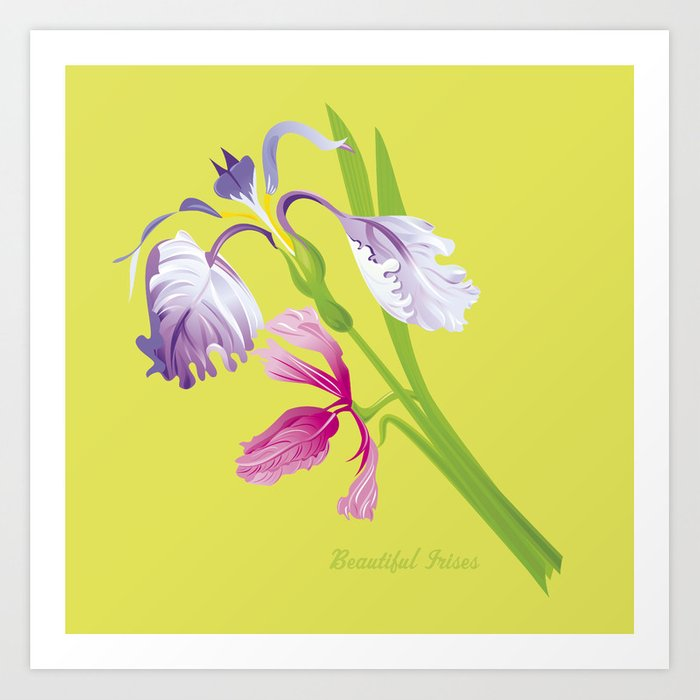 Beautiful Spring Irises Art Print