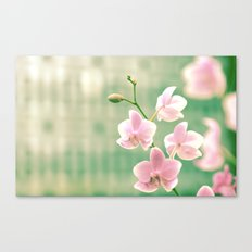 Orchid Ⅱ Canvas Print