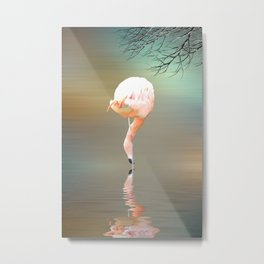 Feathered in pink Metal Print