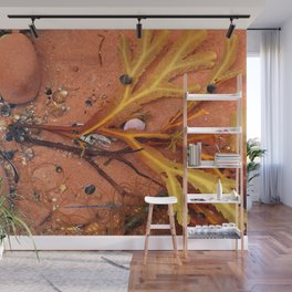 Life on the Tidal Shelf in PEI Wall Mural