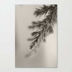 Sweet in the Mornin' Canvas Print
