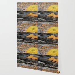 Landescape Wallpaper