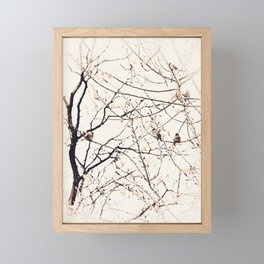 House Sparrows in Tree Branches Stylized Minimalist Nature Framed Mini Art Print