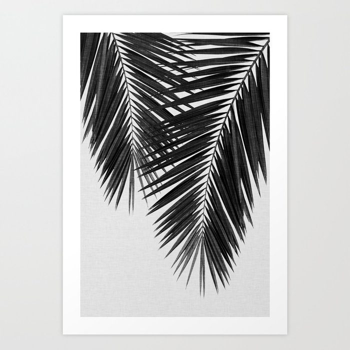 Palm Leaf Black & White II Kunstdrucke