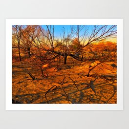 Wildfire Burnt Branches Art Print
