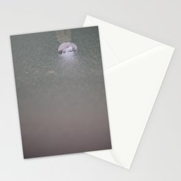 Affiorata / Surfaced Stationery Cards