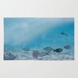 Tropical Maldives Snorkeling Fun Coral Fish In Turquoise Sea Rug