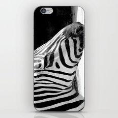b&w zebra iPhone & iPod Skin