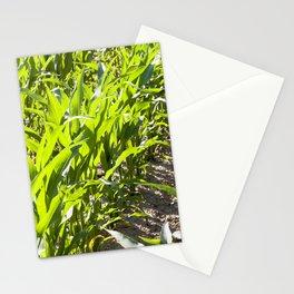 beautiful corn foliage Stationery Cards