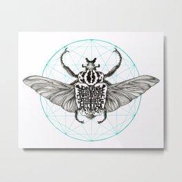 Goliath Beetle No.1 Metal Print