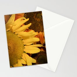Sunflower Splash Stationery Cards