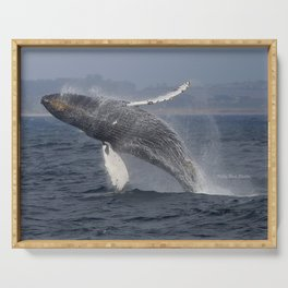 Breaching humpback whale in Monterey Serving Tray