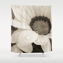 Black & White Gazanias Shower Curtain