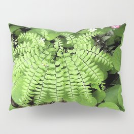 Maidenhair Fern, Adiantum Pedatum, And Friends Pillow Sham