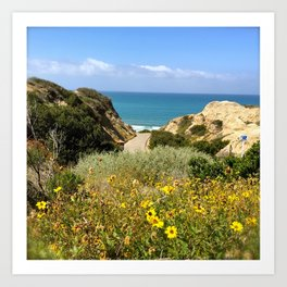 San Clemente - wild flowers on the hike to the beach at State Park Art Print