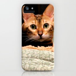 Did You Knock? iPhone Case