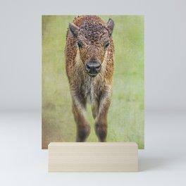Wet Wood Bison Calf Mini Art Print