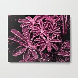 Raindrops XVI Metal Print