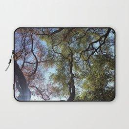 Dos Picos Ramona Oak Tree Laptop Sleeve